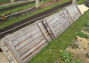 Укрытие винограда деревянными щитами. Фото