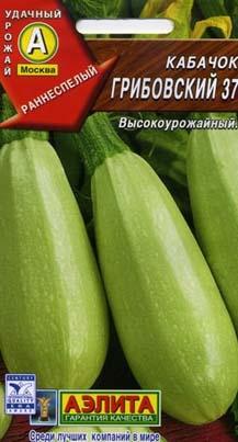 Кабачок Грибовский 37. Фото пачки с семенами
